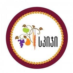 logo skigi