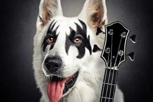special-dog-slash-ozzy-kiss1