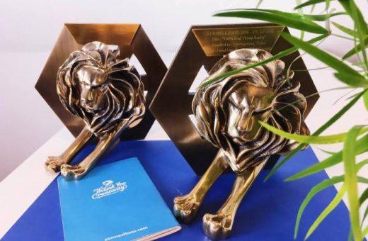 two lions in leavingstone