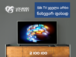 Silknet